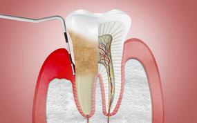 odontologia portugalete